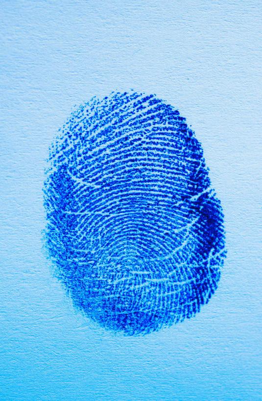 蓝色背景,纹路,纹理,一个,蓝色,摄影,影棚,单个,手印,指纹,契约,肌理
