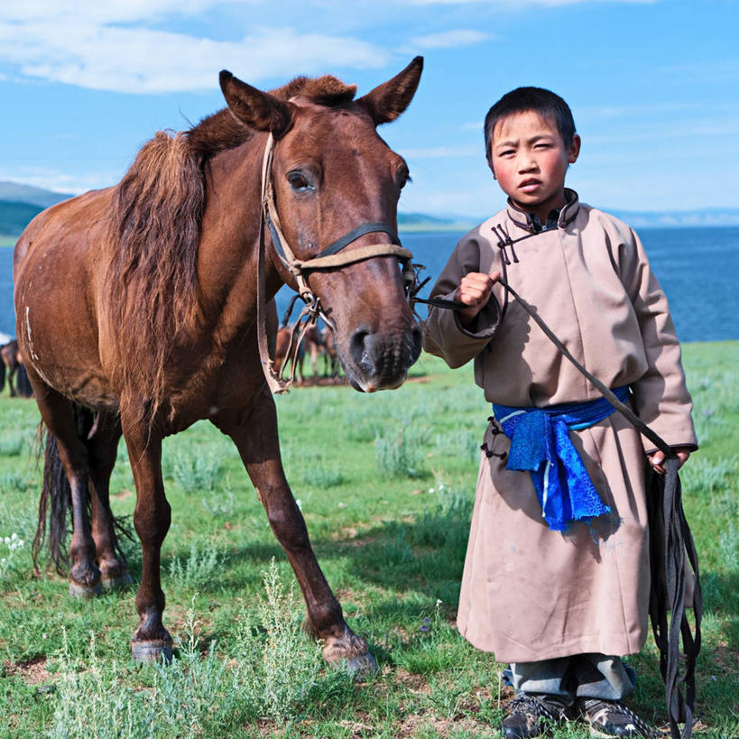 内蒙可爱的马