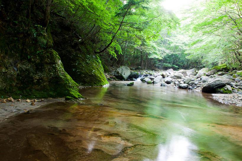 水晕 手绘景观