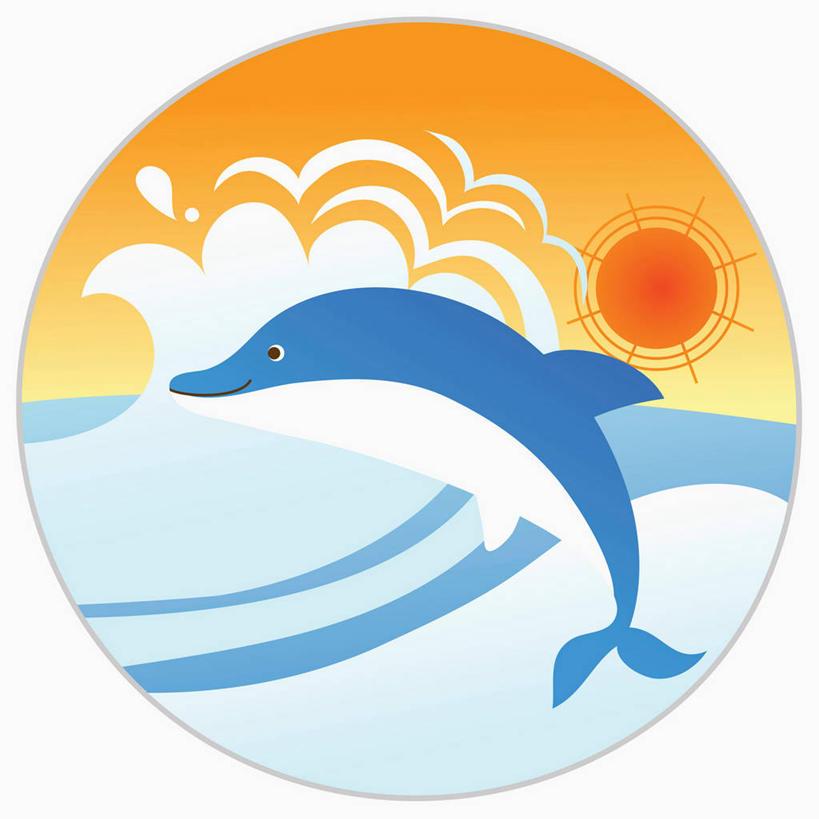数码,科技,海浪,海洋,日落,哺乳动物,海豚,鲸鱼,阴影,光线,网络,圆形