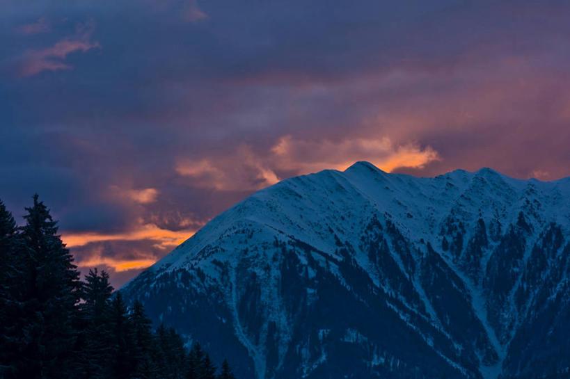 度假,日出,石头,美景,森林,山,树林,太阳,雪,雪山,植物,大雪,瑞士