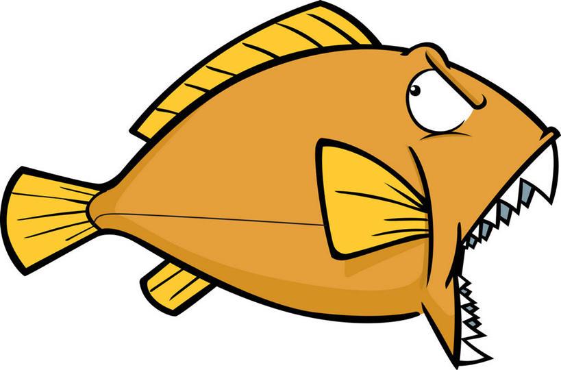 海洋里的动物图画
