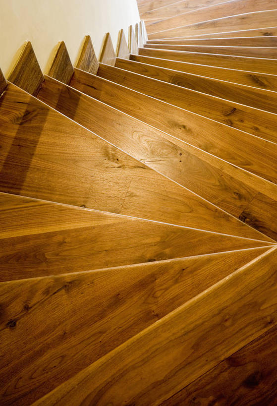 无人,竖图,俯视,室内,特写,白天,楼梯,静物,盘绕,阴影,环绕,围绕,反射