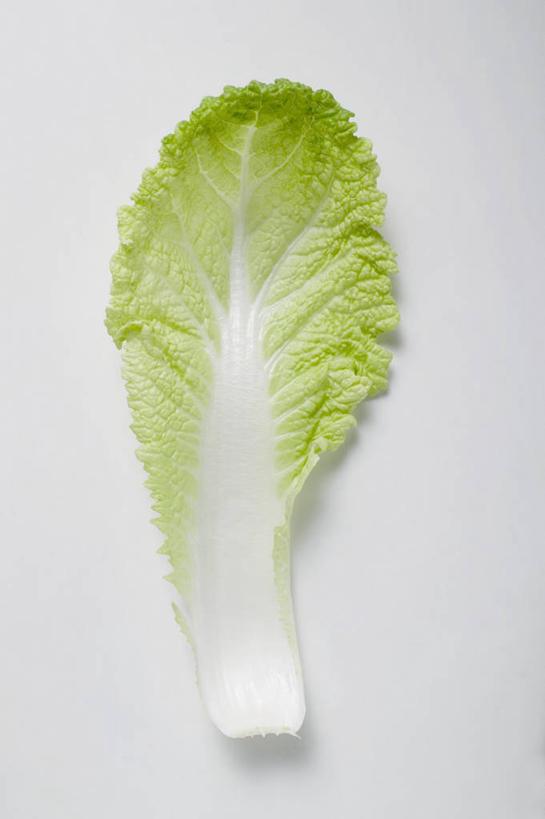 餐桌,桌子,蔬菜,叶子,一片,阴影,新鲜,反射,影子,大白菜,食品,绿叶图片
