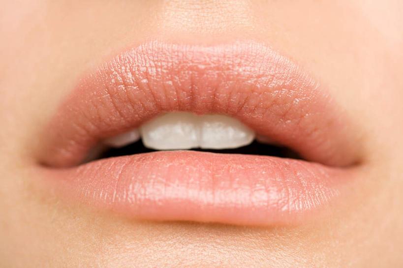 张口脸部骨骼结构图