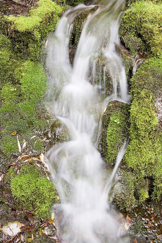北美洲,國家公園,噴灑,自然風光,美洲,俄勒岡州,俄勒岡,北亞美利加洲