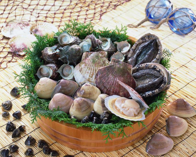石决明,点缀,抓捕,水生动物,海产品,蚌,捕捞,鱼网,水生物,海底动物