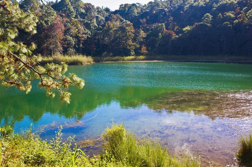 阳光,自然,湖水,享受,休闲,景色,放松,生长,成长,倒映,北美,北美洲,自
