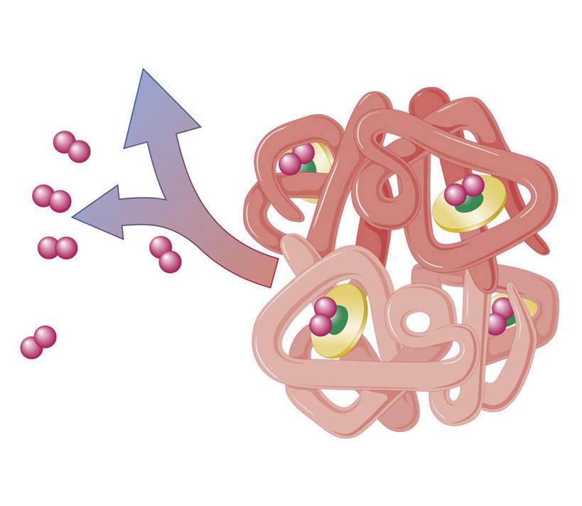 细胞元素结构示意图