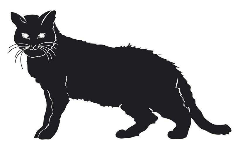 猫咪简单图画大全可爱