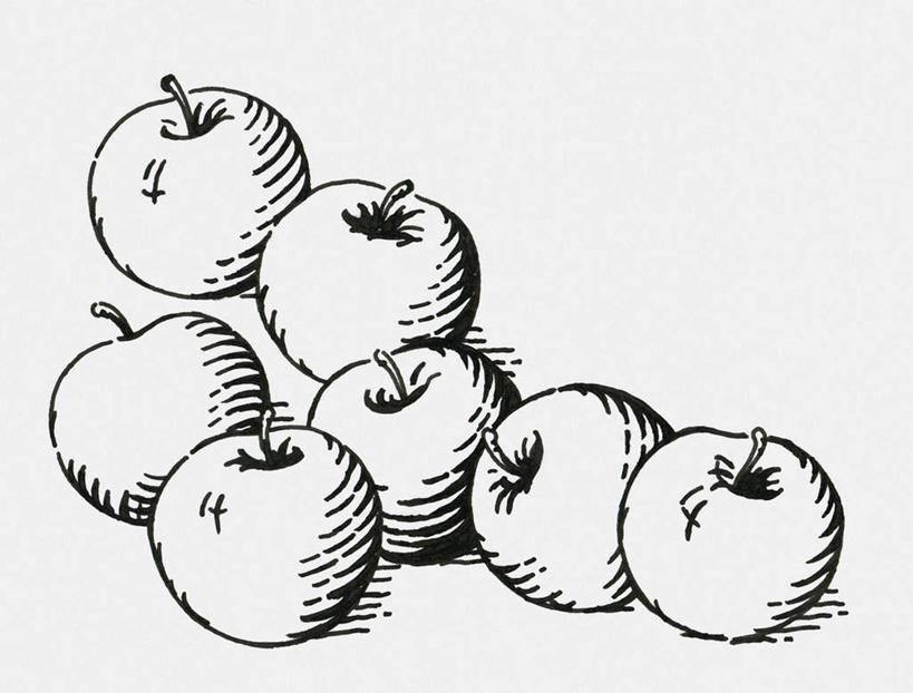 黑白,插画,室内,白天,白色背景,数码,科技,苹果,水果,一堆,许多,阴影