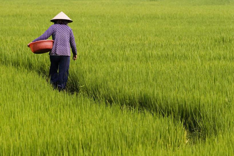 越南纸币背后的风景