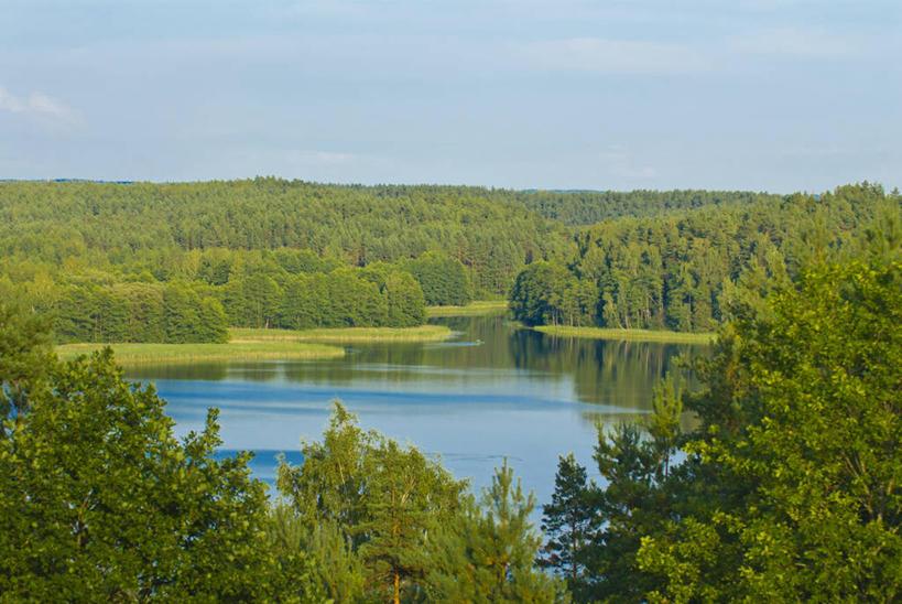 湖面,景观,水流,水面,云,云朵,涟漪,云彩,娱乐,树,树木,蓝色,绿色