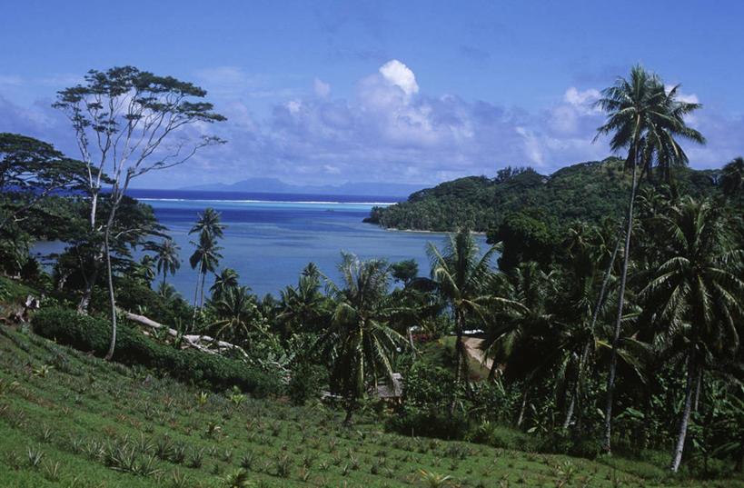 风景,天空,自然,享受,休闲,景色,放松,摄影,宁静,自然风光,大洋洲,法