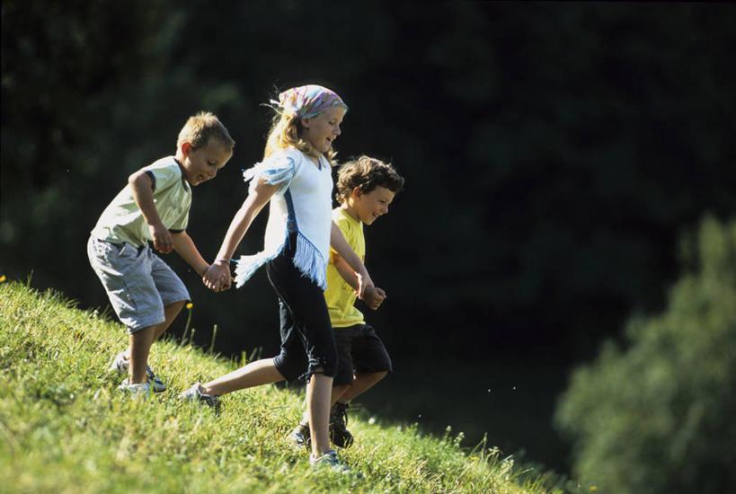 儿童观察植物的照片