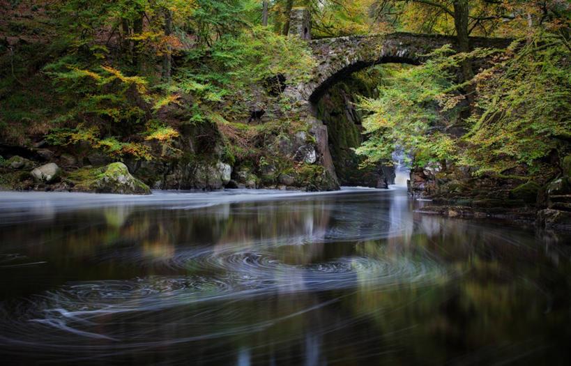 秋天枫树拱桥风景