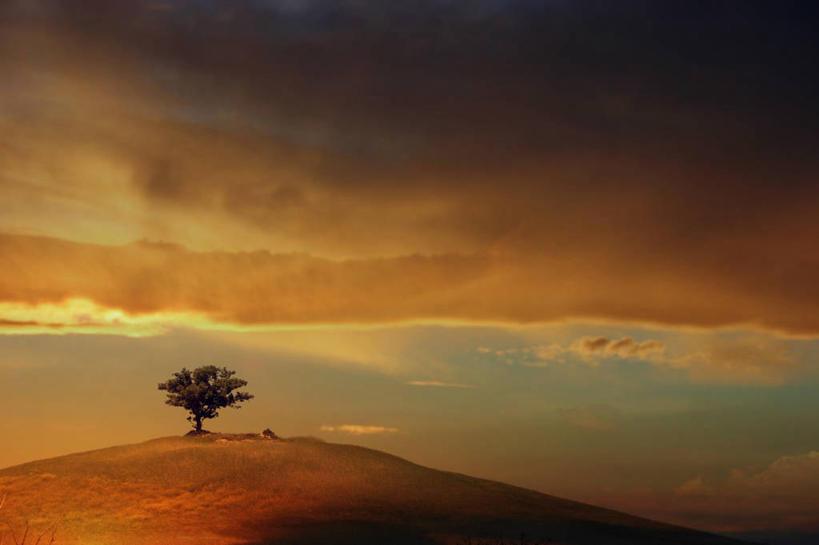 无人,横图,室外,美景,意大利,景观,云,褐色,树,风景,天空,自然,黄昏