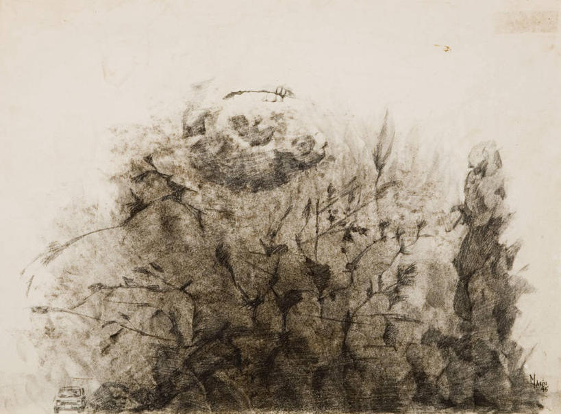 树木彩色铅笔画