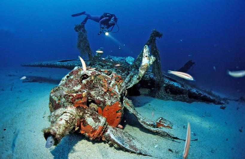 跳水,横图,运动,马赛,水下,海洋,飞机,野生动物,法国,德国,废弃,战争