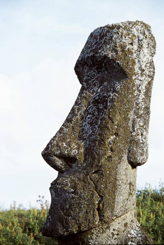 努伊国家公园,拉帕努伊国家公园,波利尼西亚群岛,彩图,复