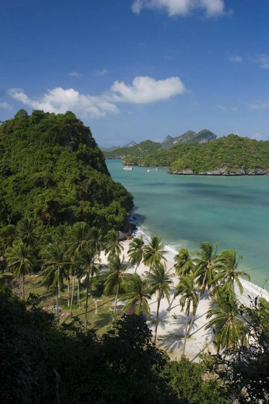 海洋,棕榈树,泰国,亚洲,沙子,岛,南海,摄影,东南亚,热带气候,苏梅岛