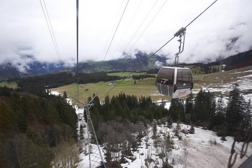 美景,名胜古迹,森林,山,山脉,雪山,标志建筑,地标,建筑,松树,瑞士