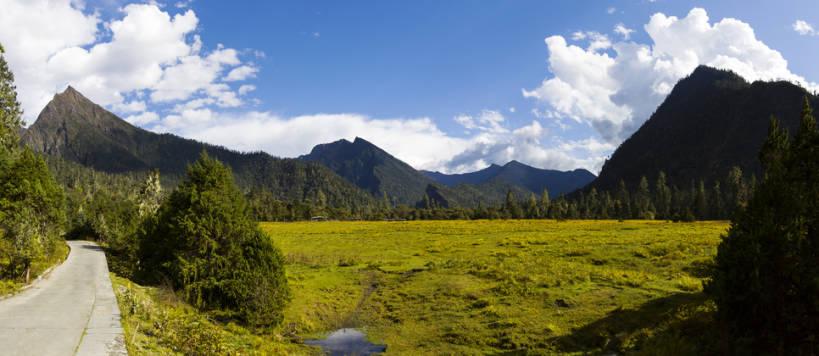 路边,山顶,山坡,云,小路,云层,娱乐,林芝,西藏,草,树,蓝色,绿色,风景